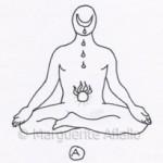 Les postures inversées (2).